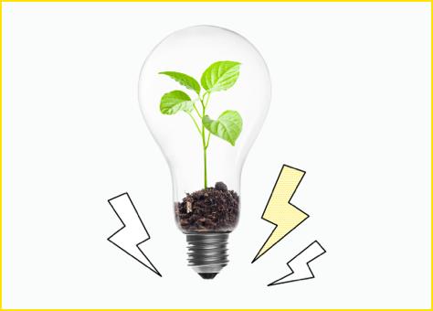 Bombilla con una planta en su interior creciendo que simboliza la energía verde de nuestras tarifas de luz